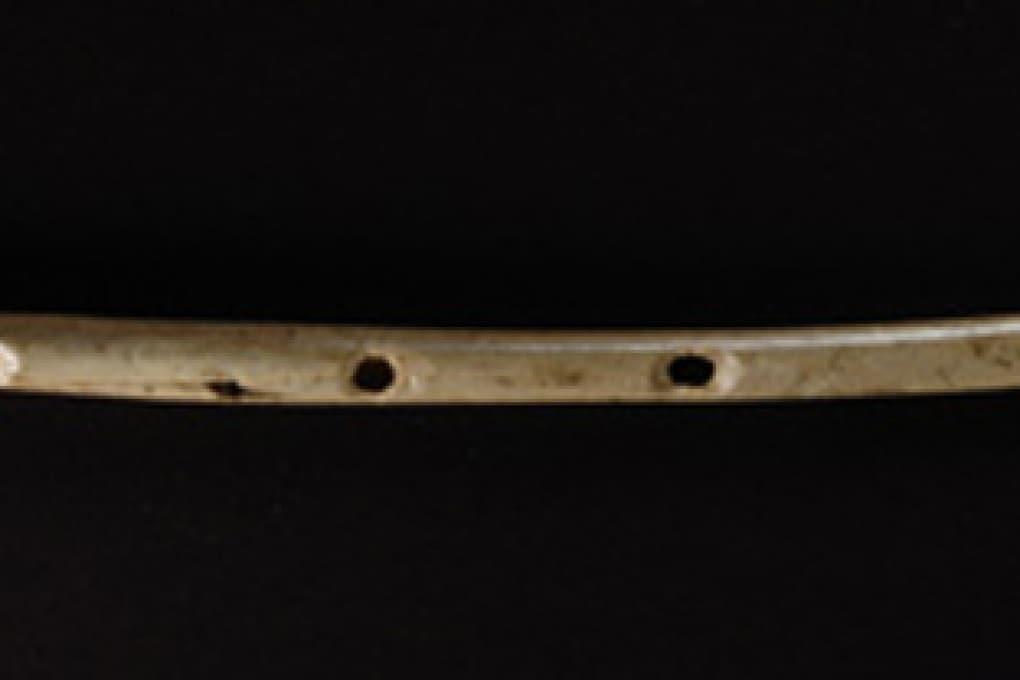 Lo strumento musicale più antico del mondo