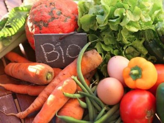 Dalle rinnovabili all'agroalimentare, dove primeggia la green economy italiana