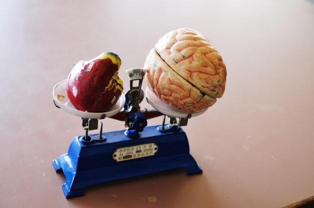 Cervello, stress e rischi cardiovascolari