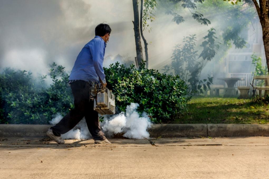 Autismo e pesticidi: l'esposizione materna al DDT correlata a un rischio aumentato per il bambino
