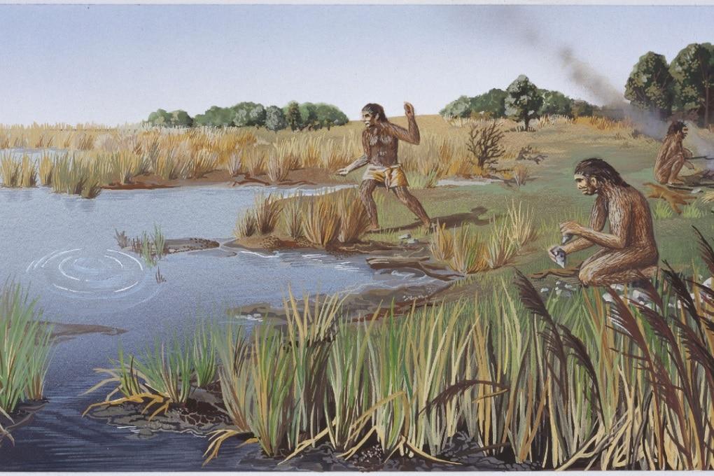 L'Homo erectus era un marinaio (e comunicava a gesti)?