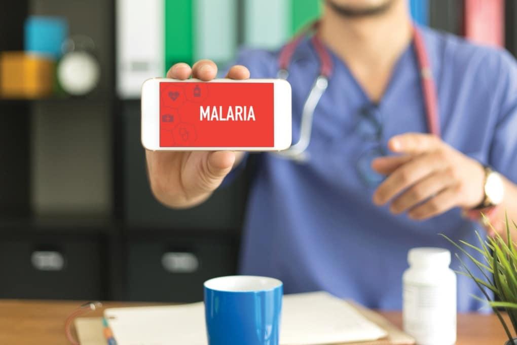 Questa zanzara trasmette la malaria? Te lo dice una app