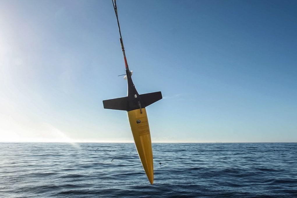 Cicloni oceanici e biodiversità