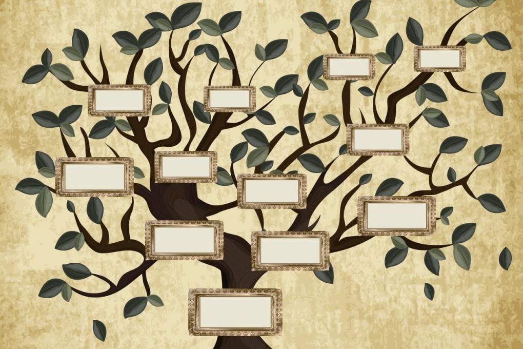 L'albero genealogico più grande del mondo: 13 milioni di parenti