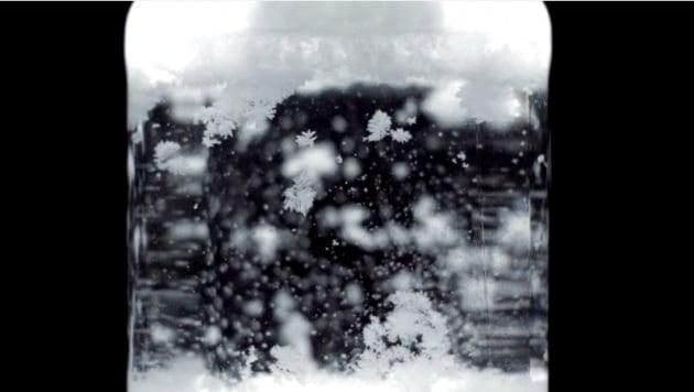 Una tempesta di neve in bottiglia