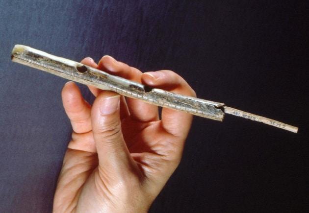 L'uomo primitivo incantava con il flauto