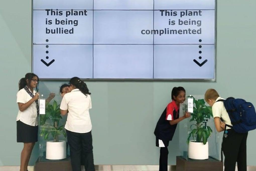 Le piante ci sentono, ma a modo loro