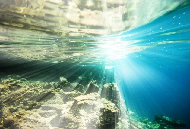 La Giornata mondiale degli oceani in 20 curiosità
