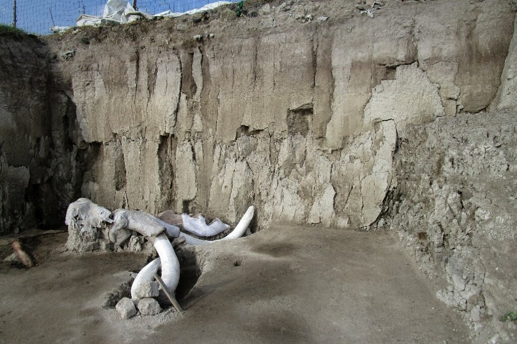 C'è un mistero nella trappola per mammut di 15.000 anni fa