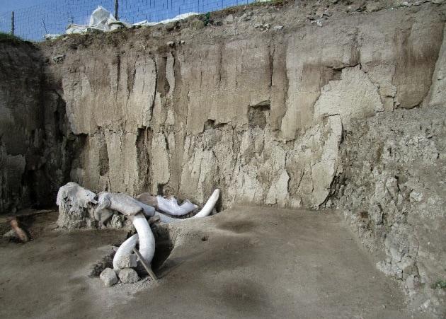 messico_il-cimitero-dei-mammut