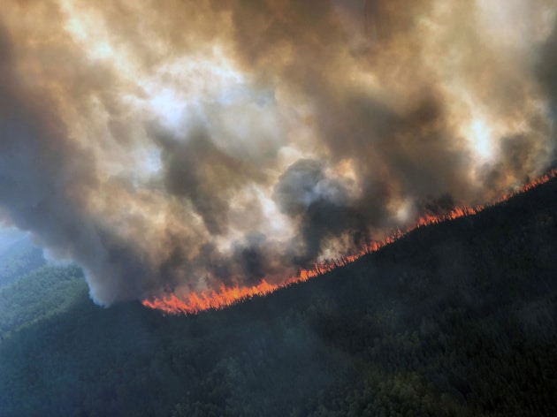 Incendi dall'Artico all'Amazzonia: siamo entrati nell'era del Pirocene?
