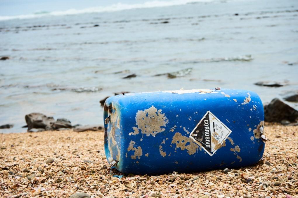 Giornata mondiale degli oceani: contaminata gran parte dei mari d'Europa