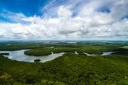 foresta-amazzonic