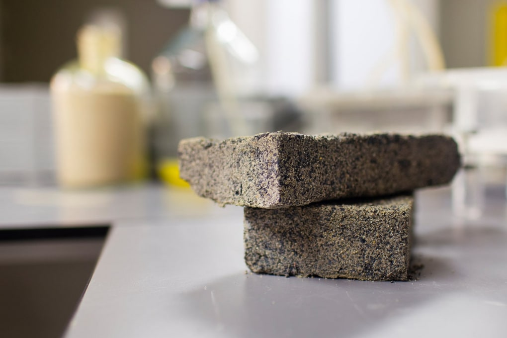 I primi mattoni ottenuti da urina umana