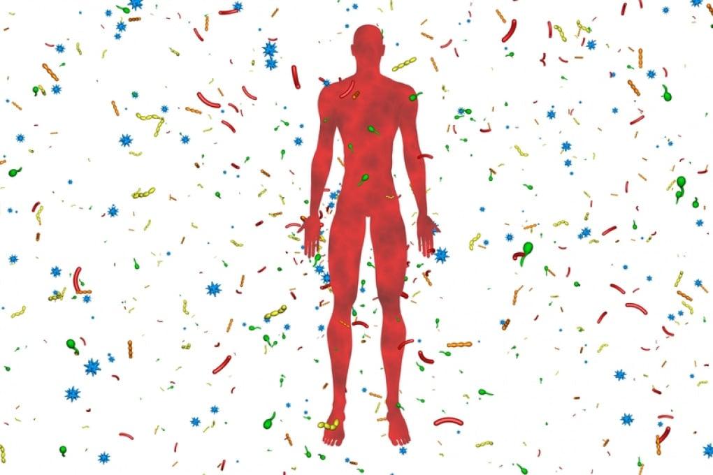 Scoperte più di 100 nuove specie di batteri nel microbiota intestinale