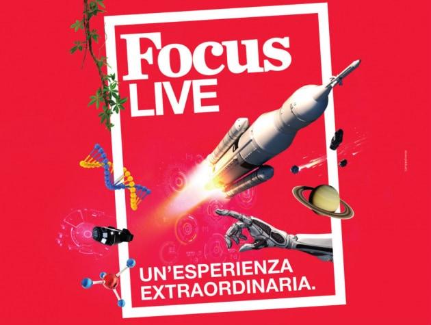 tassello-live