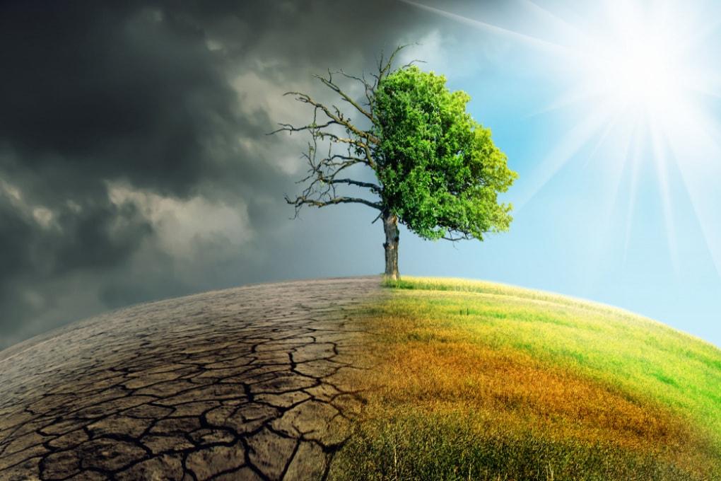 Summit ONU sul clima: ecco perché il vertice del 23 settembre a New York è importante