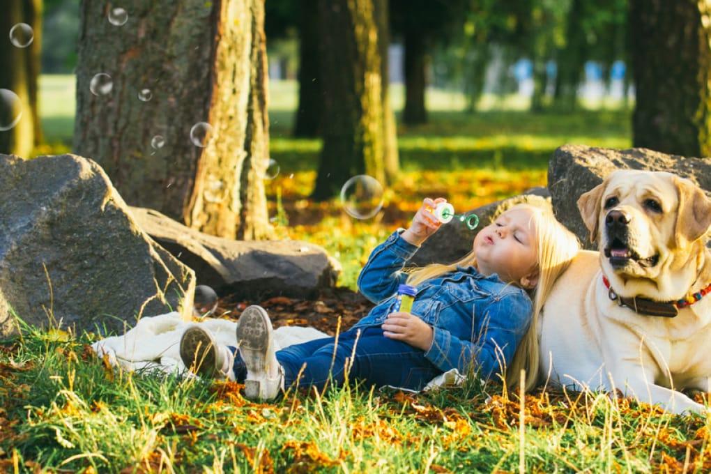 Lo stress del padrone contagia anche il cane