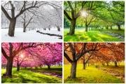 stagioni_shutterstock-1005731746