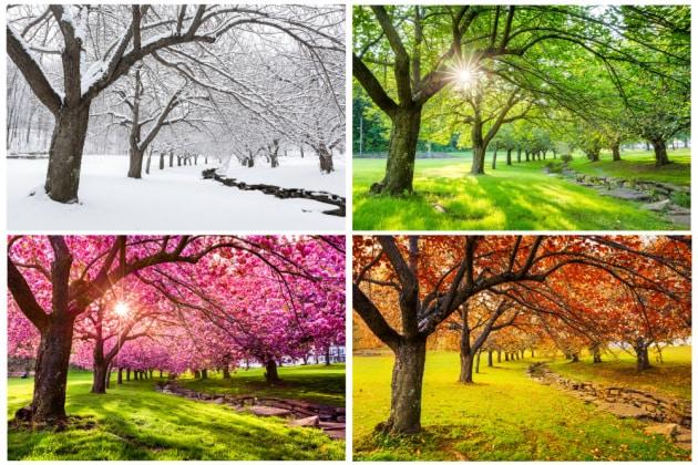 Equinozio d'autunno: le stagioni astronomiche e meteorologiche