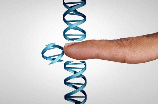 Embrioni modificati con la CRISPR: uno scienziato russo vuole riprovarci