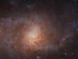 galassia-triangolo