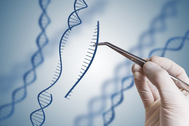 hgh-boosting-plasmid-gene-therapy-with-ghrh-use-for-hgh-ghrh-article-vchal-1000x665-