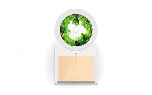 OGarden Smart, orticoltura facile con l'orto indoor
