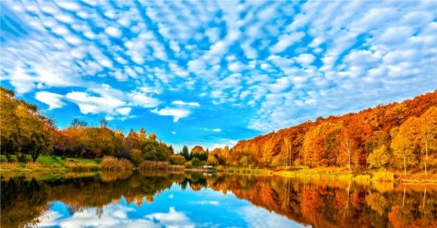 Intestino e autunno, a domande e risposte