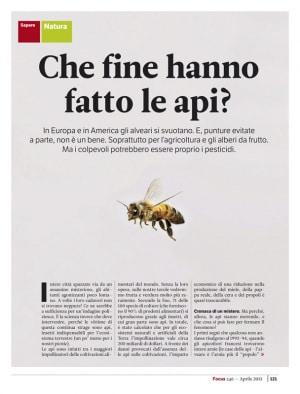 Focus 246 - Che fine hanno fatto le api?