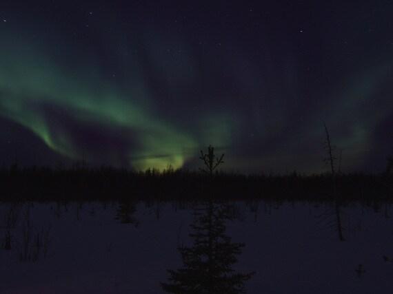 aurore polari, aurore boreali, ionosfera, vento solare, attività solare, Sole, cicli solari