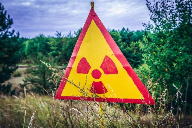 La radioattività della Foresta Rossa di Chernobyl