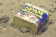 inquinamento-dei-mari_spam