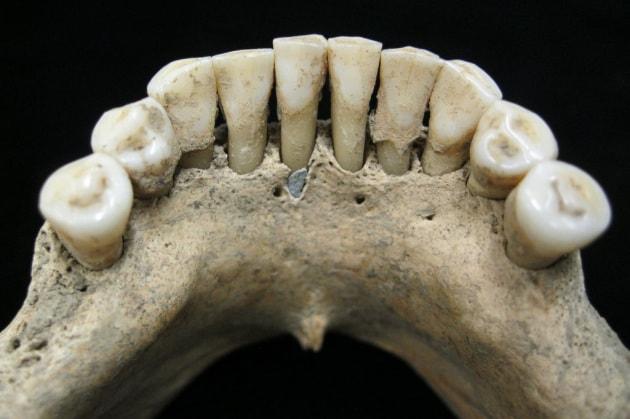 Anche le donne miniavano i codici medievali: lapislazzuli nel tartaro di una suora amanuense