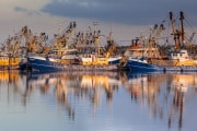 pescherecci-ormeggiati