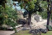 maya-copan