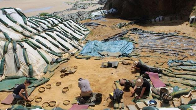 Oltre 250 impronte nella sabbia: una finestra senza precedenti sulla vita dei Neanderthal