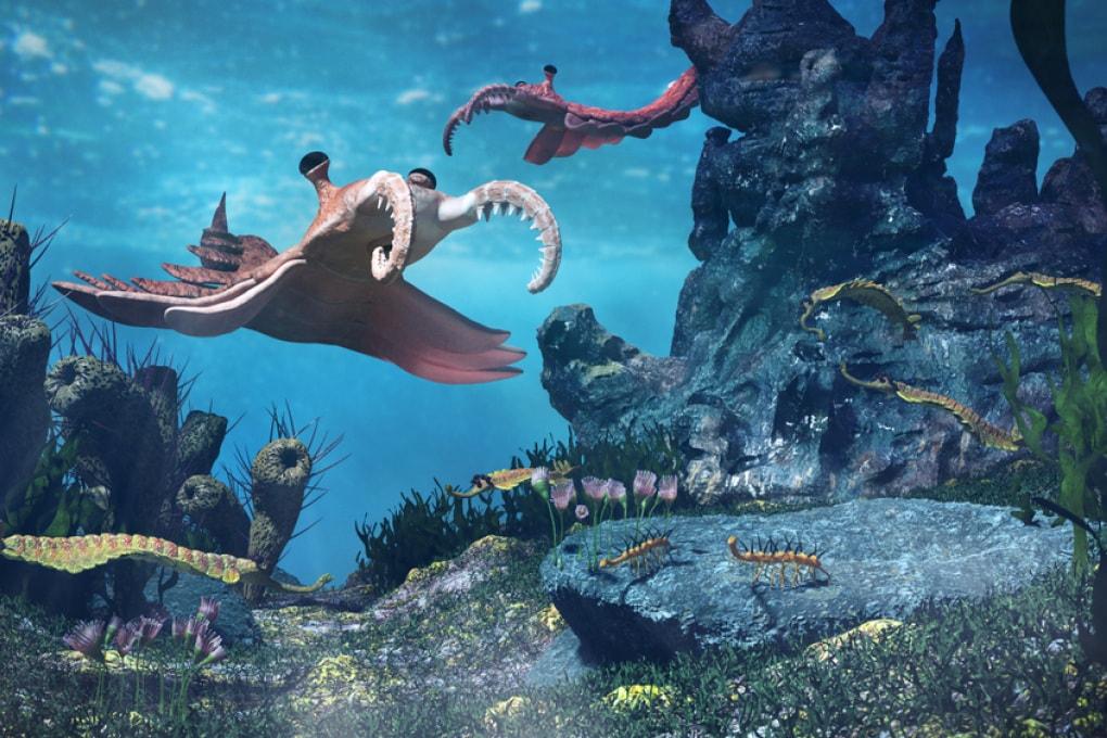 Le fluttuazioni di ossigeno regolarono la biodiversità del Cambriano