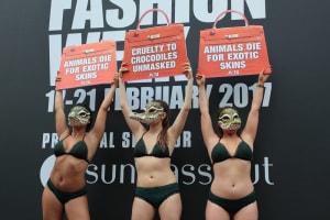 PETA, contro l'uso della pelle di coccodrillo
