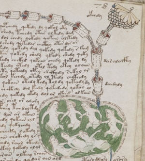 paleolinguistica, codice Voynich, decrittazione, lingue scomparse, Medioevo, MS408, Gerard Cheshire