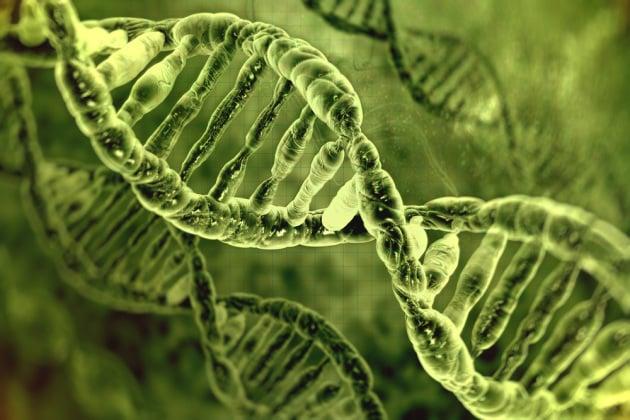 L'autismo è collegato a mutazioni nel DNA non codificante