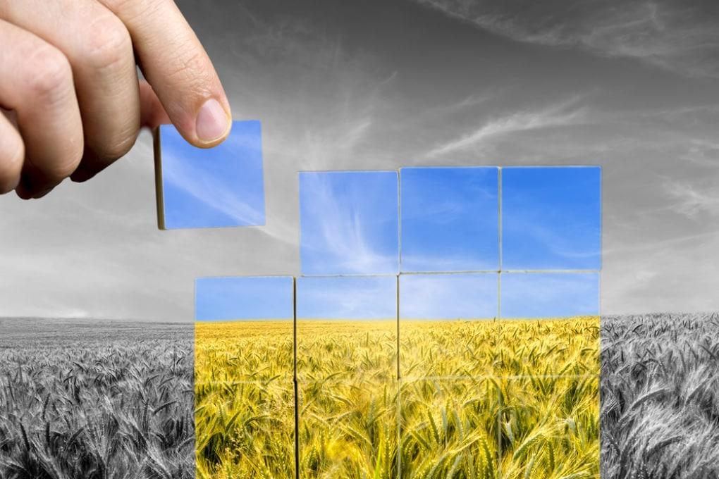 Giornata Mondiale dell'Alimentazione: come arginare le perdite mondiali di cibo