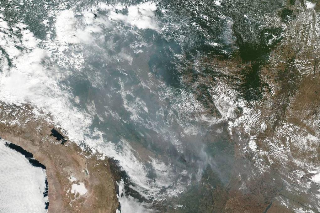 Incendi in Amazzonia: quello che c'è da sapere