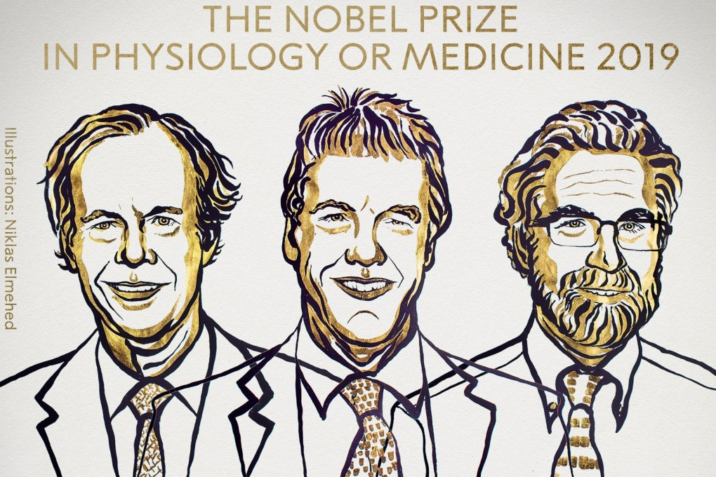 Nobel per la Medicina 2019 a William G. Kaelin Jr, Sir Peter J. Ratcliffe e Gregg L. Semenza