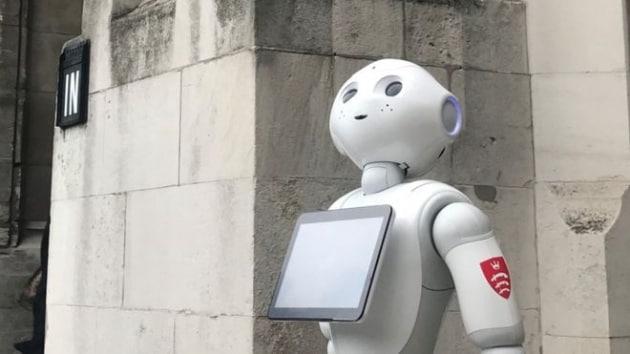 pepperrobotparlamentoinglese