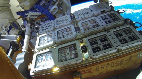 BIOMEX: esperimenti su microrganismi sulla ISS