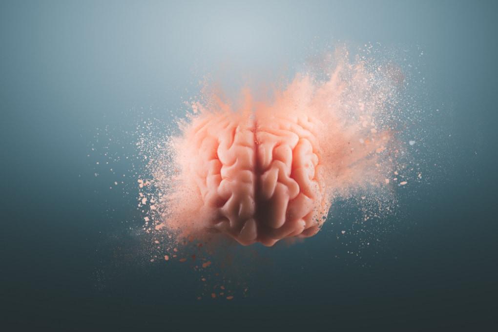 Che ne è stato dello Human Brain Project?