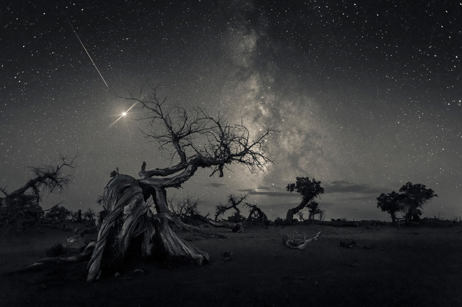 Astronomy Photographer of the Year 2019: i vincitori