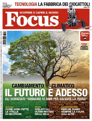 Focus 314