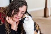 gatti-sociali